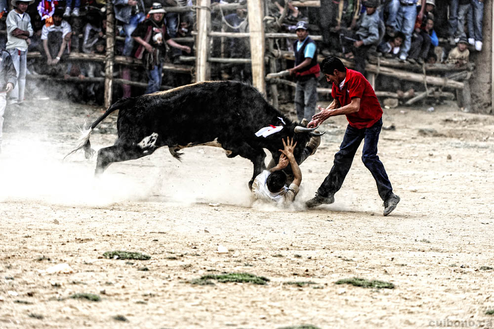 The first bullfighter is run over by the bull