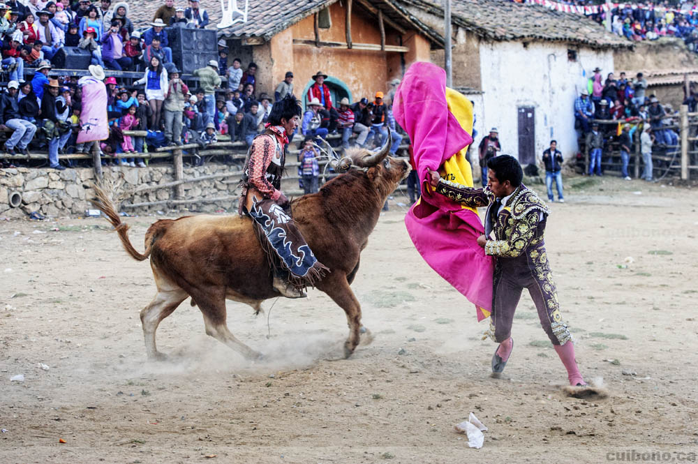 Bullfighting meets bullriding